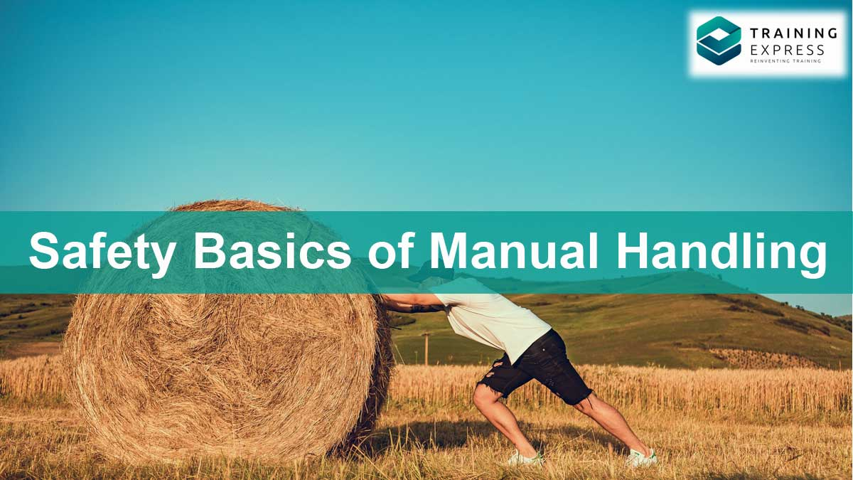 Safety Basics of Manual Handling for Workplace Safety