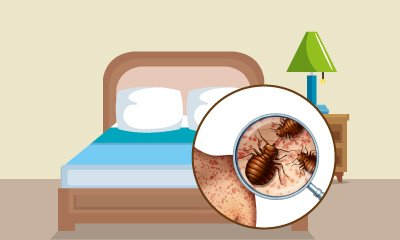 The Bed Bug Problem Online Course